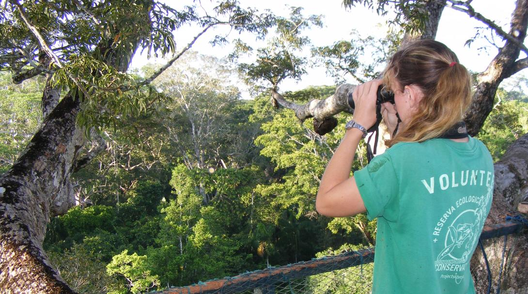Conservation volunteer doing a wildlife survey in the Amazon Rainforest in Peru